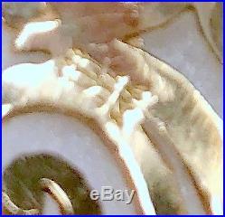 James Avery 14K Yellow Gold Open Sorrento Women's Ring Size 8